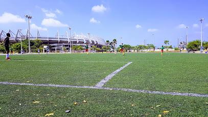 Complejo Deportivo Pibe Valderrama